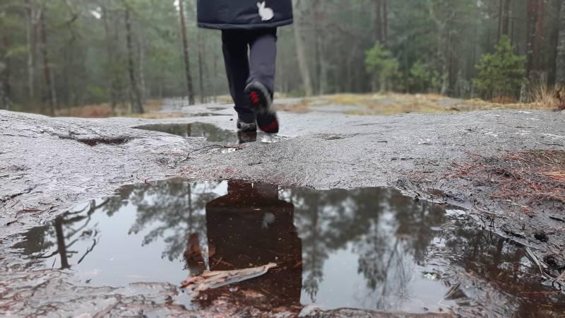 Retkivinkki: Hanikan luontopolku Espoossa