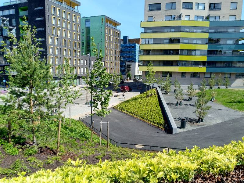 Hyväntoivonpuisto Jätkäsaaressa palkittiin
