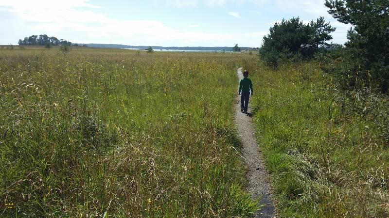 Kävelyretki Kallahden niemelle